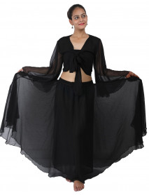 Belly Dance Skirt and Top Set
