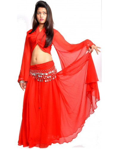 Professional belly dance costumes Canada - (Skirt + Top + Coin Scarf)